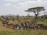 Discovering Malawi: Africa's HiddenGem